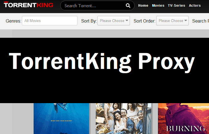 TorrentKing proxy and mirror sites